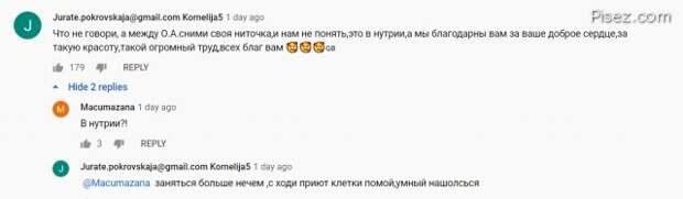 Забавные ошибки в интернет-комментариях