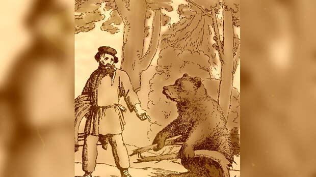 Громкие слова о медведях и котах