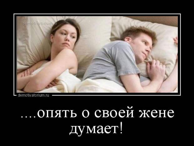 5402287_1615196725_demy7 (600x452, 55Kb)