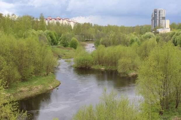 В Петрозаводске мужчина упал в реку и не мог выплыть – на место выехали спасатели