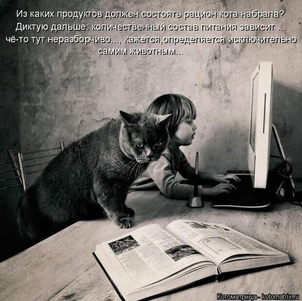 Котоматрица: Из каких продуктов должен состоять рацион кота набрала? Диктую дальше: количественный состав питания зависит ... чё-то тут неразборчиво..., к