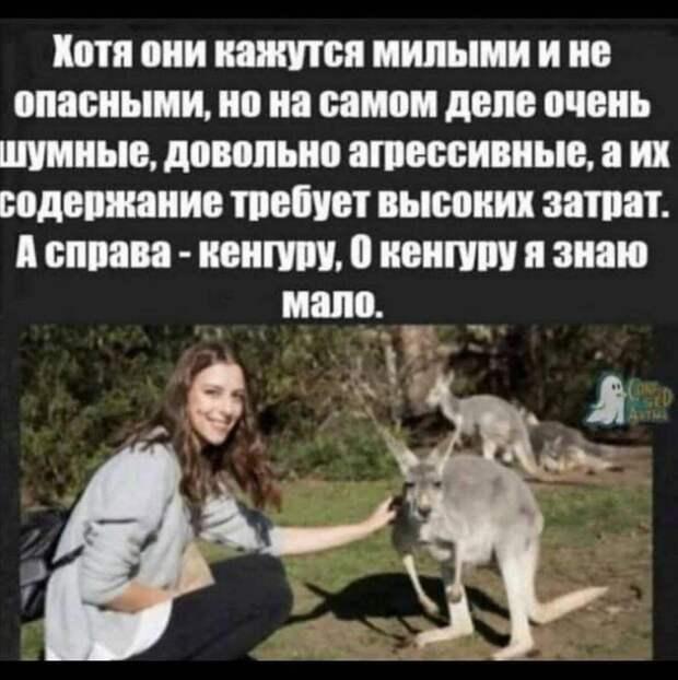 - Я могу записаться к терапевту?  - У нас терапевт платный, 2000 рублей...