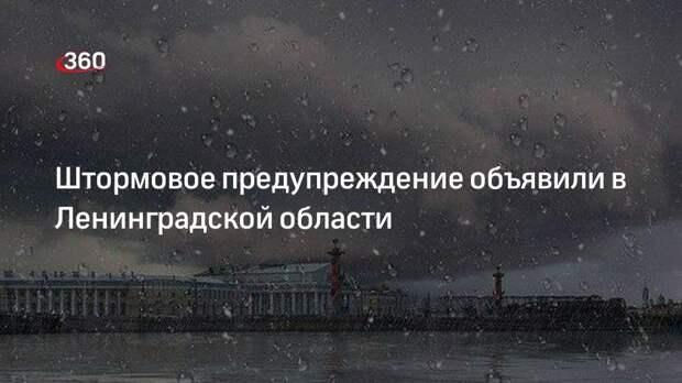 Штормовое предупреждение объявили в Ленинградской области