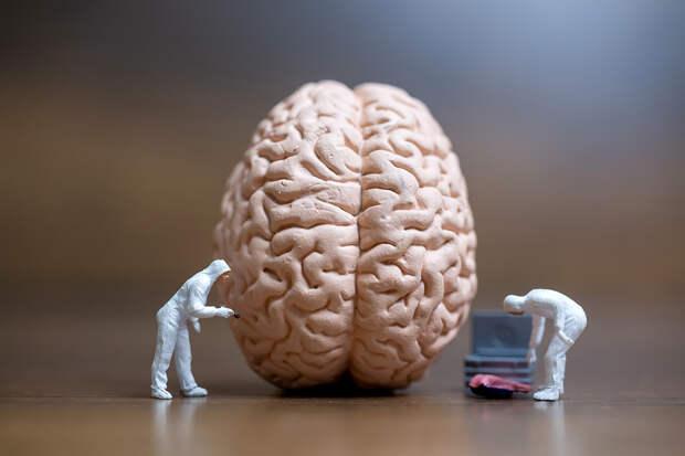 Пограничное расстройство личности: симптомы, причины и осложнения