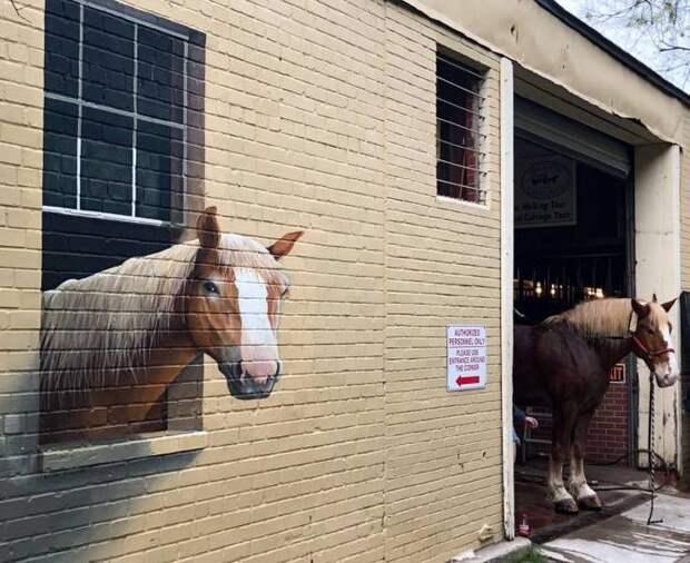 Роспись стены конюшни