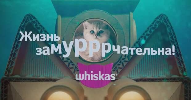 Whiskas обновил бренд и запустил «замурррчательную» кампанию