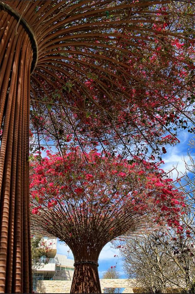 Оцените идею: цветущие кроны