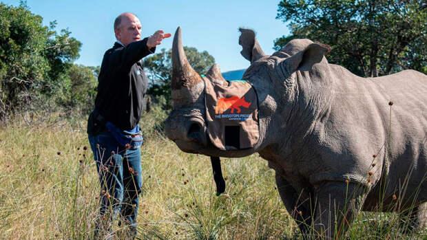 Росатом стал ключевым партнёром международной инициативы по спасению носорогов