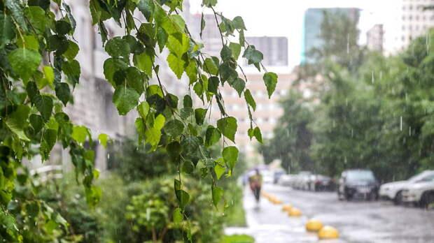 """Дождь с грозой сменится """"великой сушью"""", предупредили москвичей синоптики"""