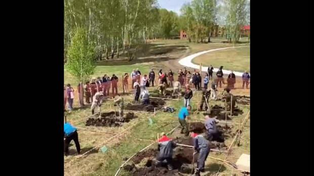 В Новосибирске прошел чемпионат по скоростной копке могил