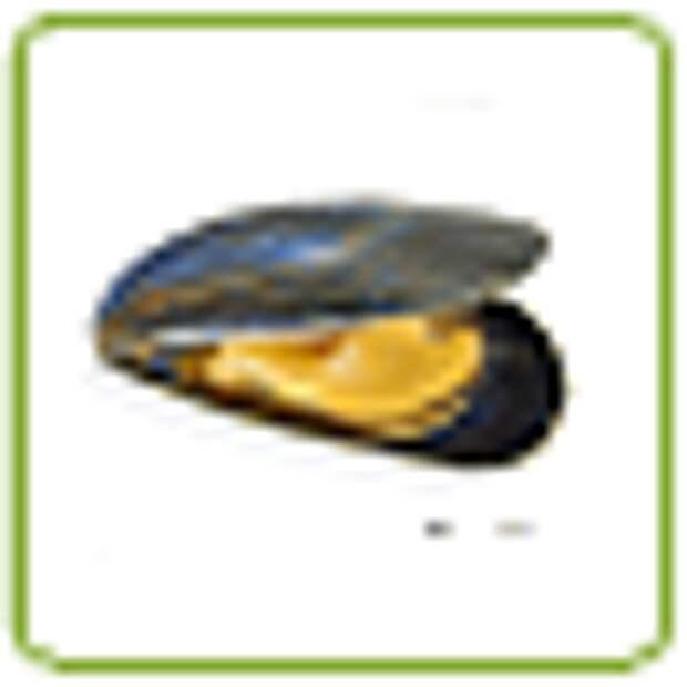 Жареные мидии в кляре, рецепт с фото