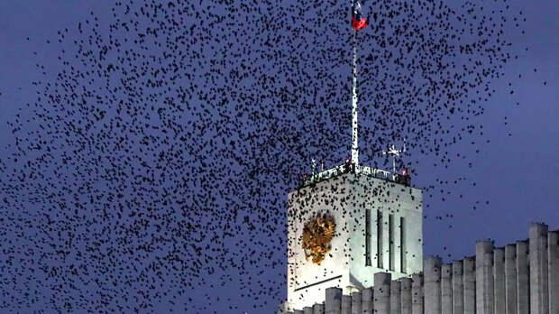 Цинизм и безразличие к Отечеству: Матвиенко жёстко разнесла олигархов