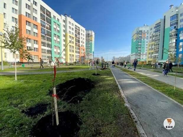 Екатеринбуржцы выбирают дизайн-проекты для «апгрейда» знаковых городских программ