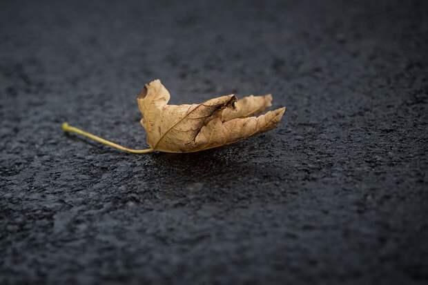 Асфальт.Фото:pixabay.com
