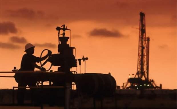 Обзор иностранного капитала в промышленности Росси