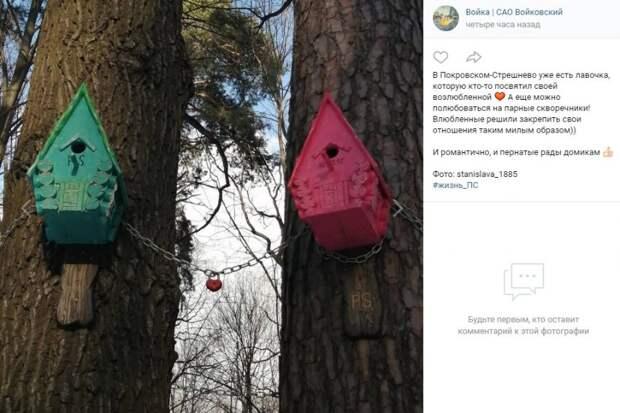 Фото дня: скворечники для птиц-романтиков в парке «Покровское-Стрешнево»