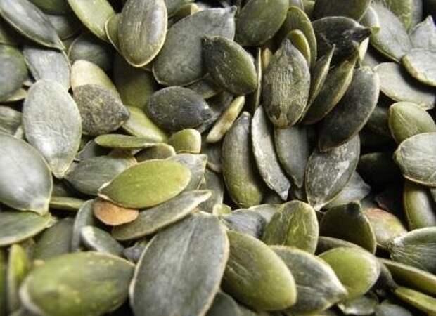 Голосеменная тыква - для любителей тыквенных семечек