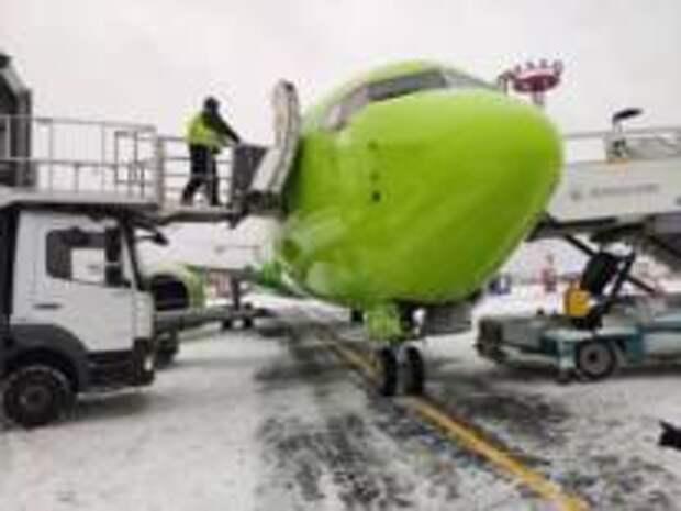 Домодедово и S7 Airlines первыми в России запустили сортировку мусора