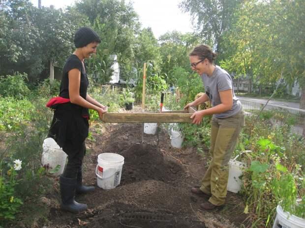 Необходимые работы в саду и огороде в октябре