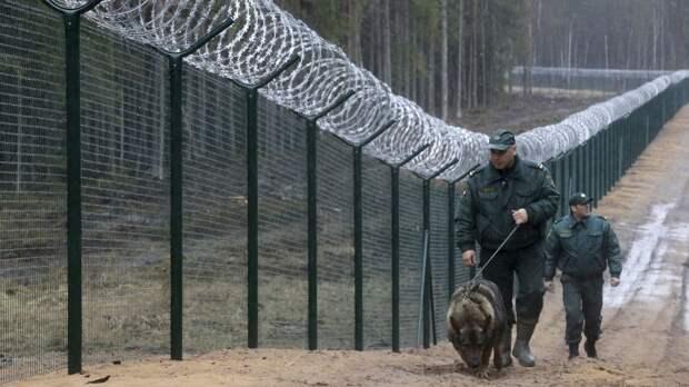 В Литве предложили построить забор на границе с Беларусью