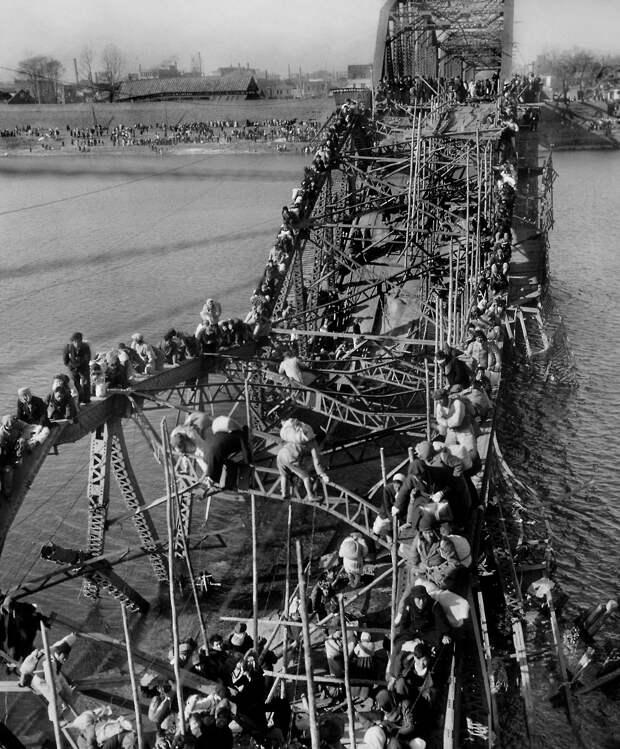 k28 1204 46 впечатляющих снимков Корейской войны