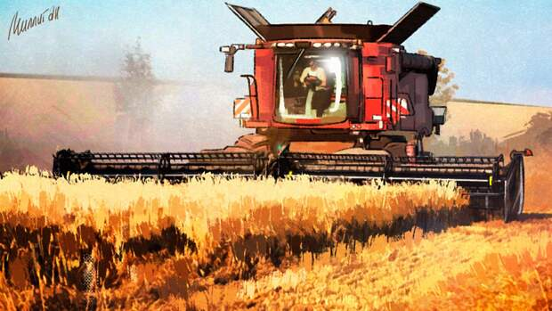Владимир Путин предсказал удачный урожай в текущем году