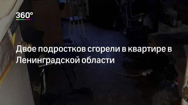 Двое подростков сгорели в квартире в Ленинградской области