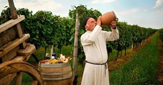 Что нужно знать о грузинском вине: краткое введение втему