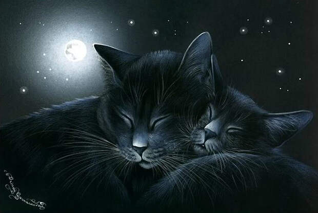 Милые котики в рисунках Ирины Гармашовой