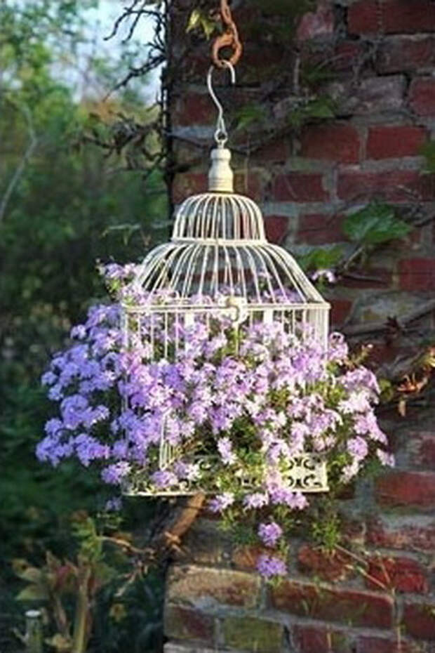 flowers-in-bird-cages-ideas2-4-3 (400x600, 226Kb)