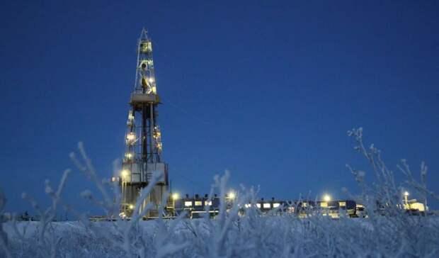 Восточно-Бованенковский газовый участок наЯмале хотят купить структуры НОВАТЭКа и«Газпрома»