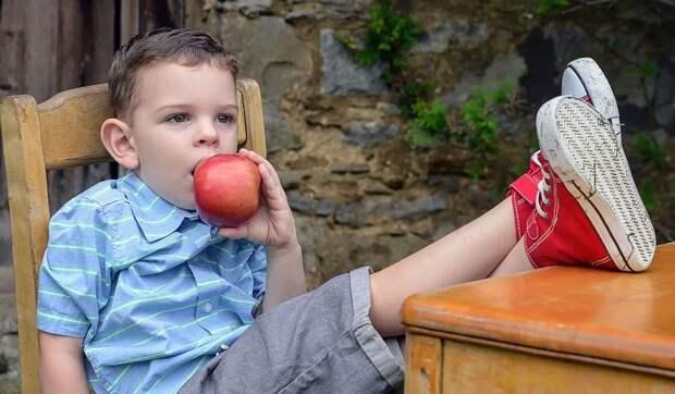 Диетолог заявил, что всего 8% детей в РФ питаются правильно
