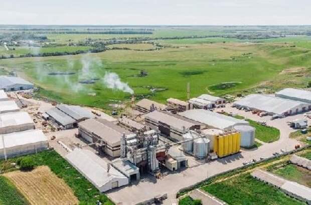 """Компания """"Экоойл"""" строит крупный элеватор для хранения пшеницы"""