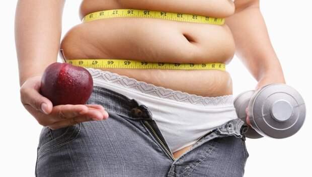 Почему копится жир на животе: 6 основных причин и 11 эффективных решений