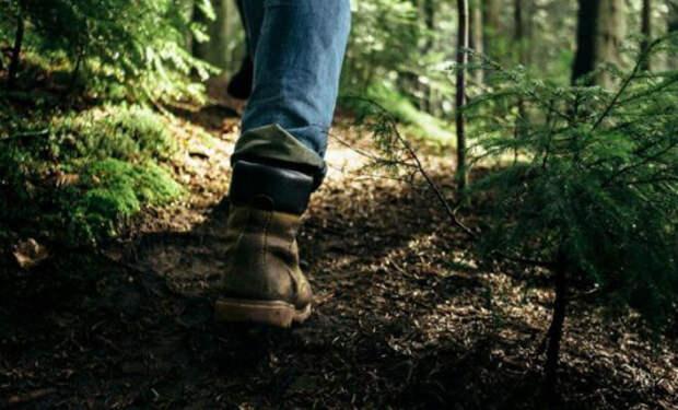Техника бесшумной ходьбы