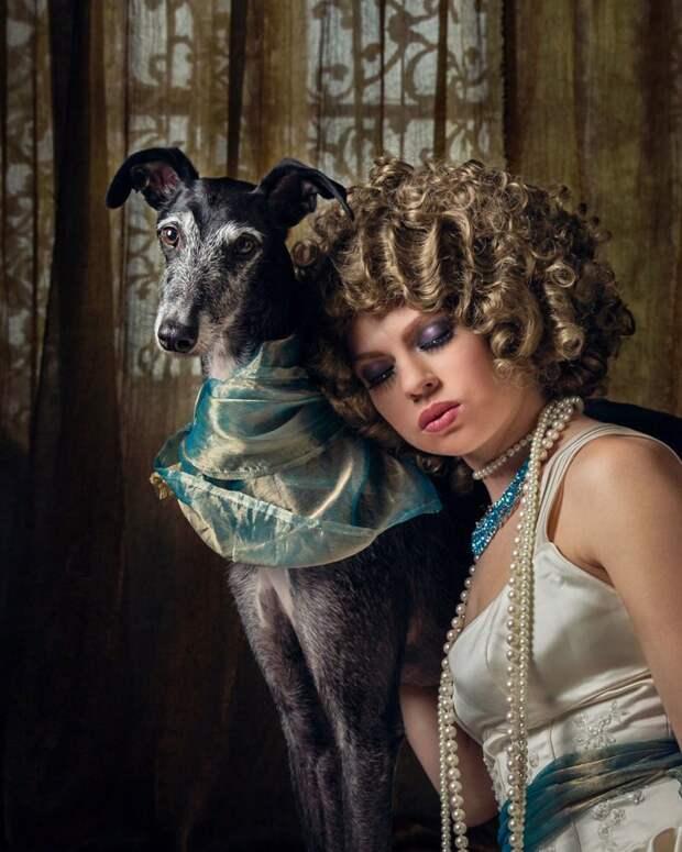 21. Порода, борзая, гальго, животные, испания, собака, спасение, фотография