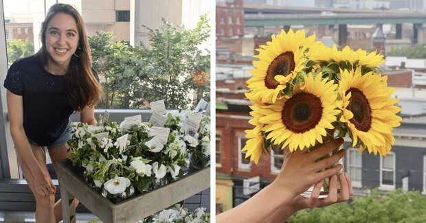 Молодая врач ходит на чужие свадьбы, чтобы собирать цветы для одиноких пациентов