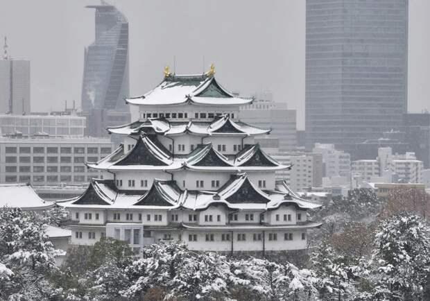 Заснеженный замок Нагоя