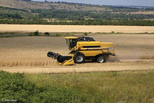 Урожай России 2020 года. Результаты снова рекордные