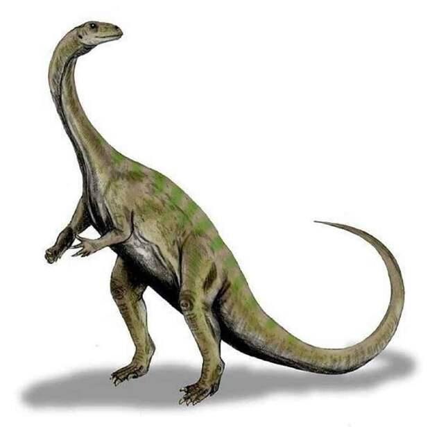 Динозавр-дерево