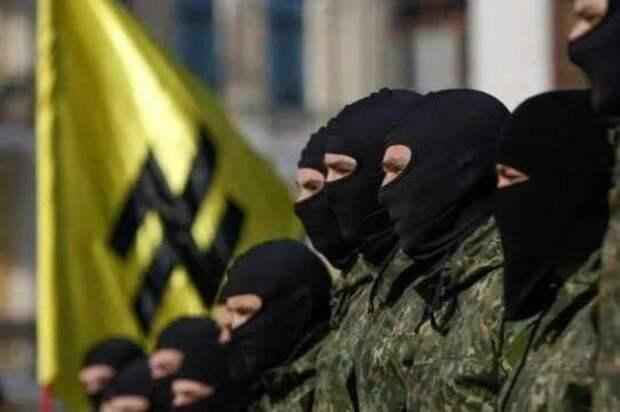 В Госдуме предложили запретить въезд в Россию неонацистам с Украины