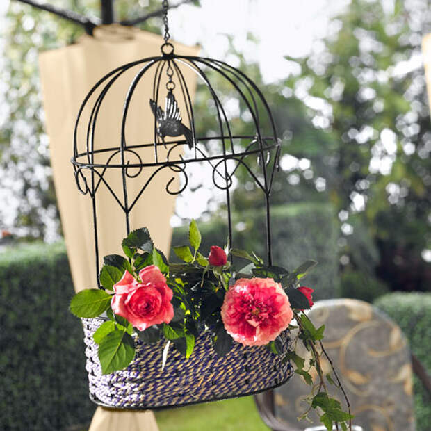 flowers-in-bird-cages-ideas3-5-1 (500x500, 212Kb)