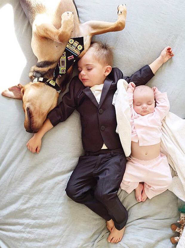 Тройная дружба - супер-фото!