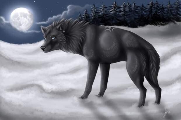 волк в полную луну