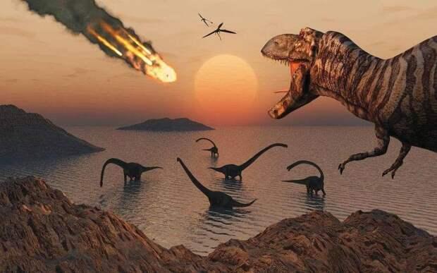 ВАвстралии открыт неизвестный ранее видгигантских динозавров (ФОТО)