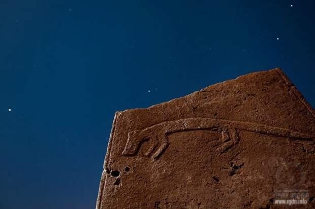 Изображение лисы на боковой части колонны. Гёбекли-Тепе