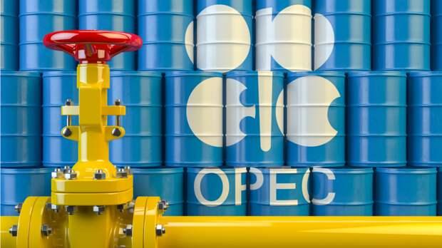 Страны ОПЕК+ приняли решение увеличить добычу нефти в январе на 0,5 млн тонн
