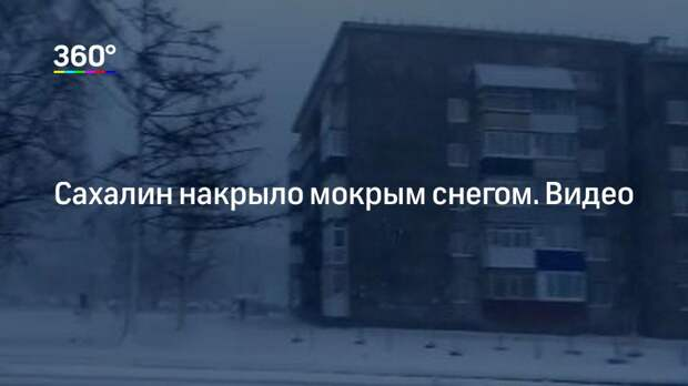 Сахалин накрыло мокрым снегом. Видео