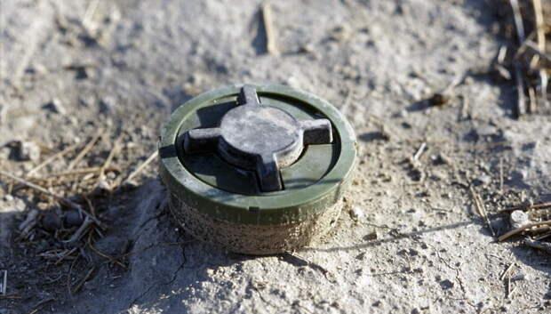 Боеприпасы времен ВОВ обнаружили в Мытищах