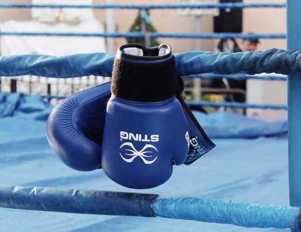 Боксеры из Ростокина завоевали четыре медали на окружном турнире